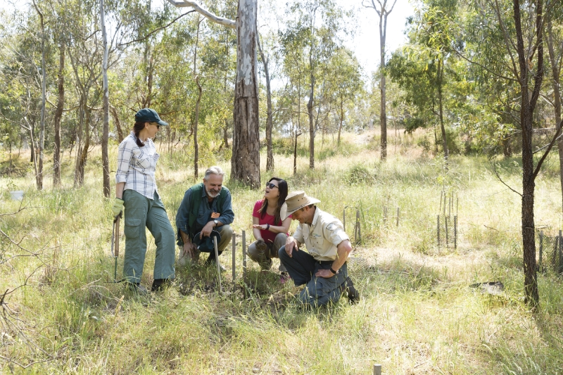 Nature Stewards contributes to Melbourne's Greening the City Project