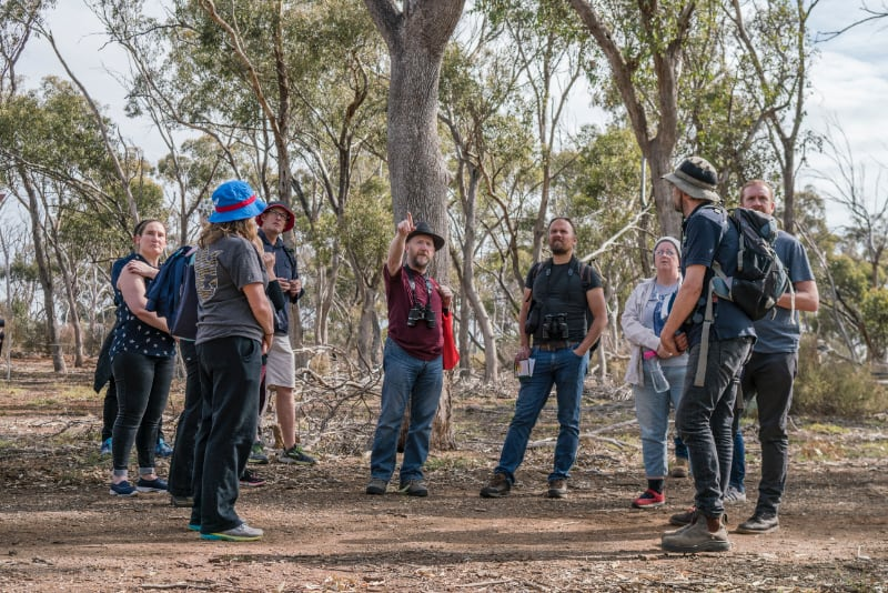 a group of people in the bush listening to an instructor